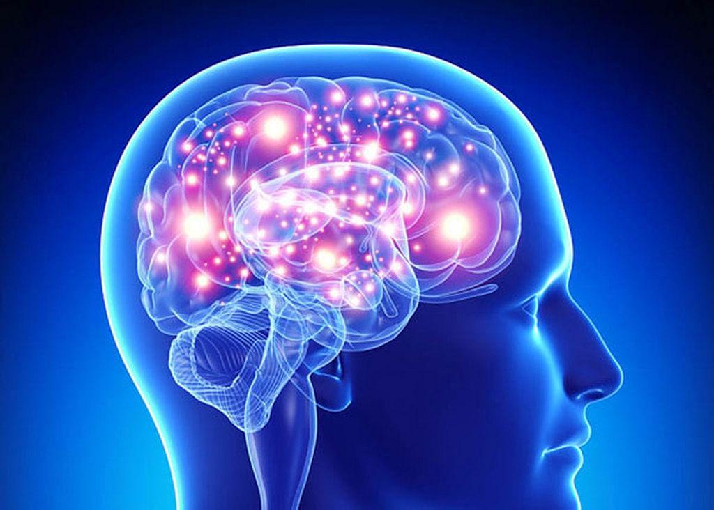 اختلالات مغزی - brain disorders
