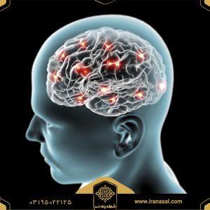 شناخت و آنزیم موثر در  آلزایمر