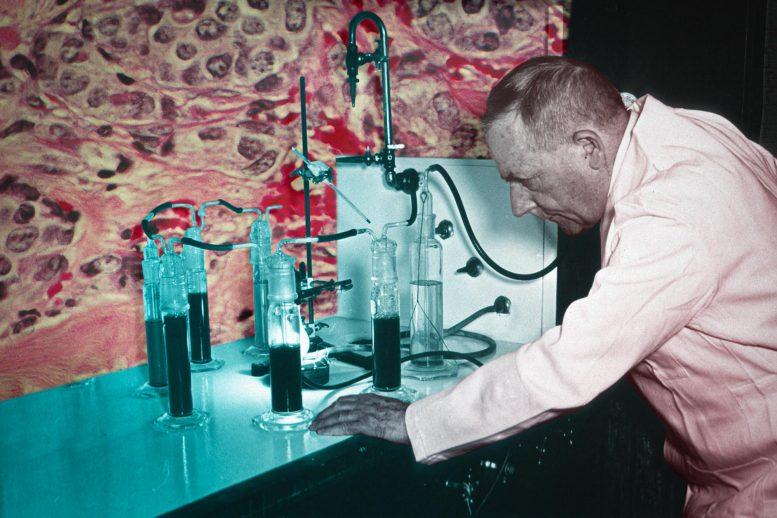 حل یک تناقض 100 ساله: چرا سلولهای سرطانی این همه انرژی را هدر میدهند؟