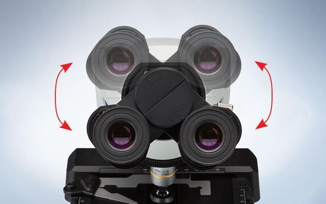 چشمیهای میکروسکوپ